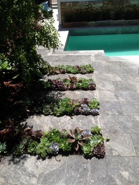 Cliff st 1 gardening services sydney
