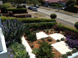 Nimboidia lawn and garden care sydney
