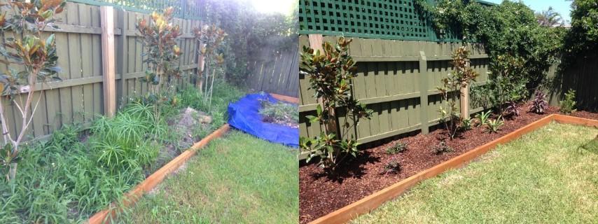 garden specialists sydney