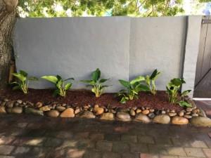 garden cleaning sydney