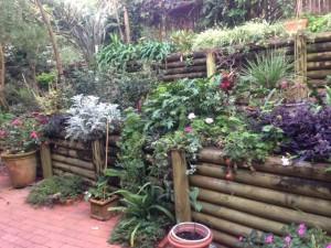 landscape designers sydney 1