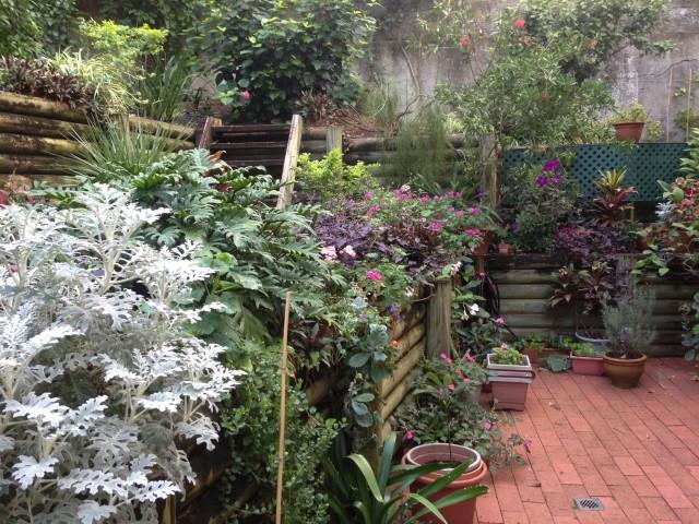 landscape gardeners sydney bondi