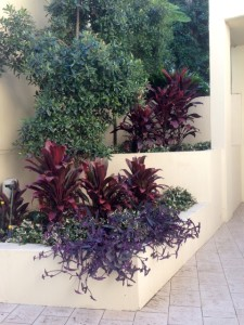 landscaping front yard sydney
