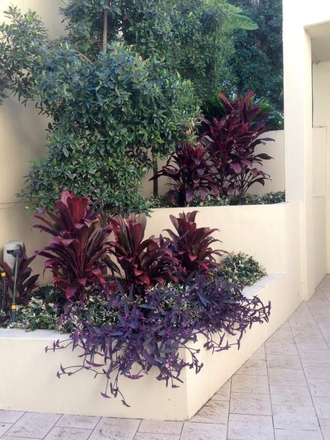 landscaping front yard sydney