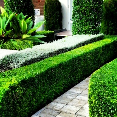landscaping near me sydney