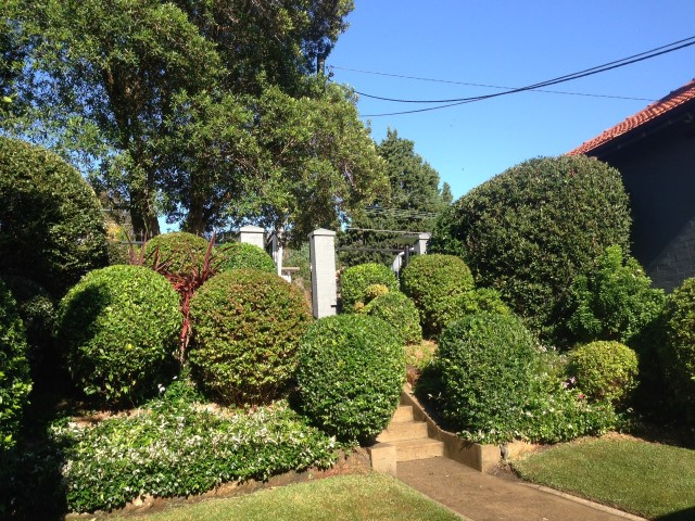 outdoor landscaping eastern suburbs sydney