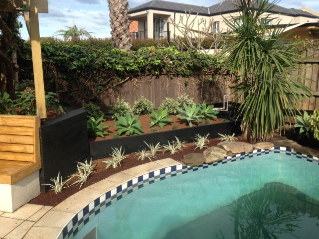 pool landscapers eastern suburbs sydney