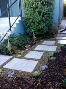 small front yard lanscaping eastern suburbs sydney 1
