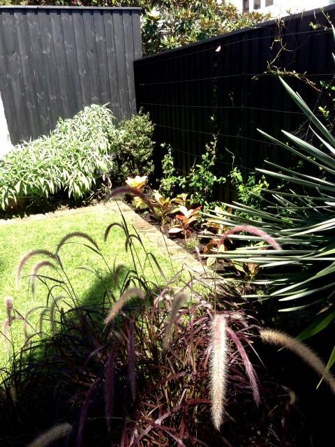 small garden landscapers sydney
