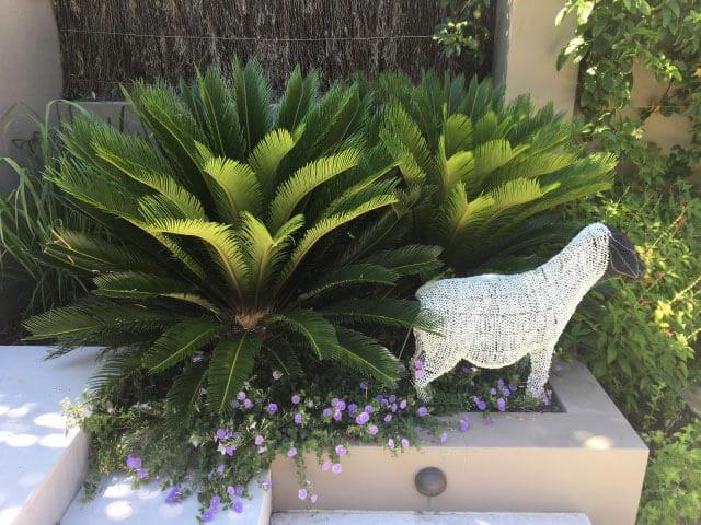 gardener eastern suburbs sydney