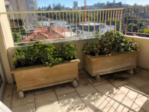 garden maintenance for apartment