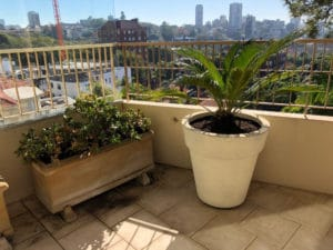 garden services for small apartment