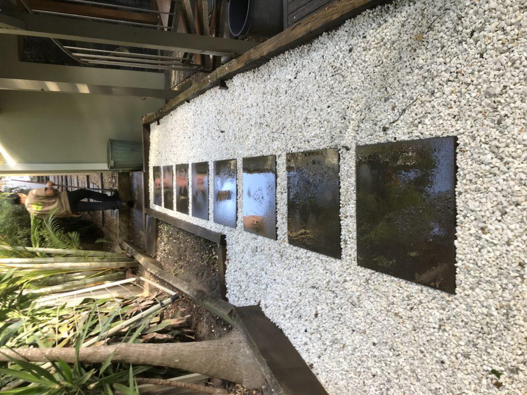 landscaping in sydney