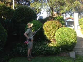 garden maintenance beaconsfield