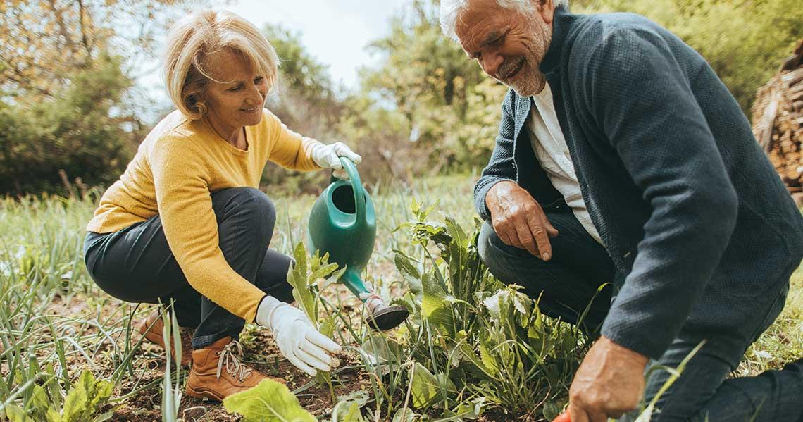Benefits of Gardening for Seniors