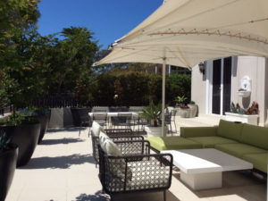 garden maintenance and design eastern suburbs sydney