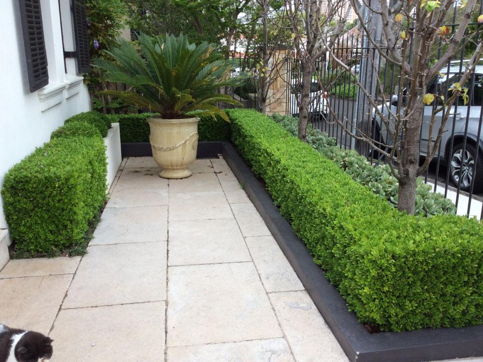 landscaping design sydney