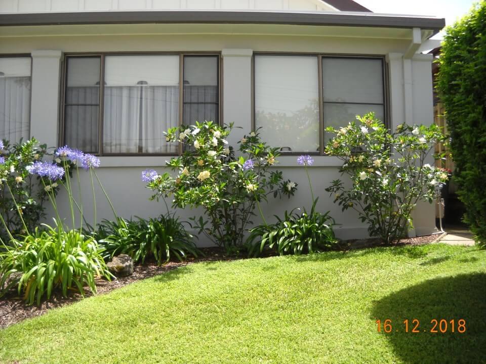 garden landscaping bondi eastern suburbs sydney