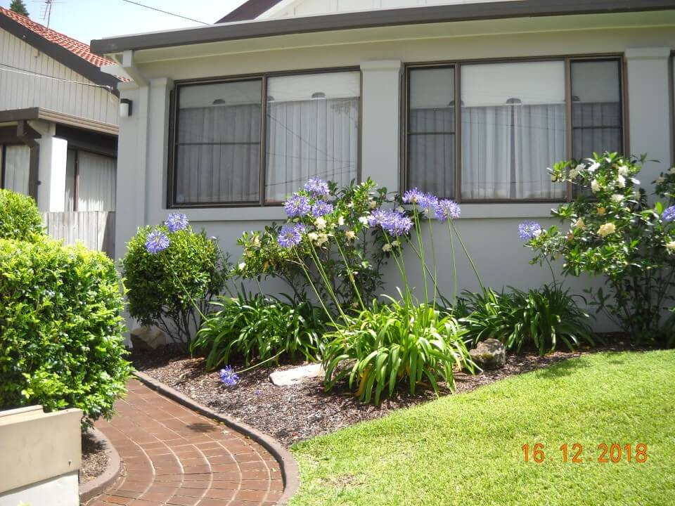 garden maintenance bondi