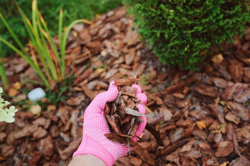 garden mulching service