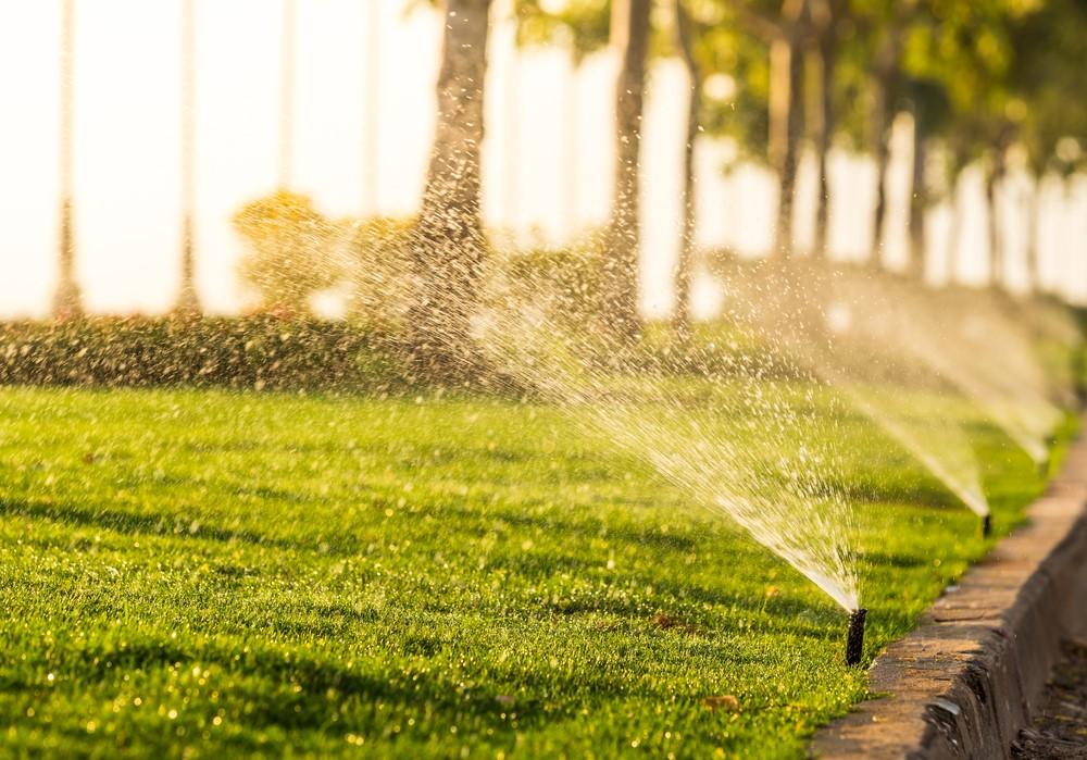 lawn irrigation sydney