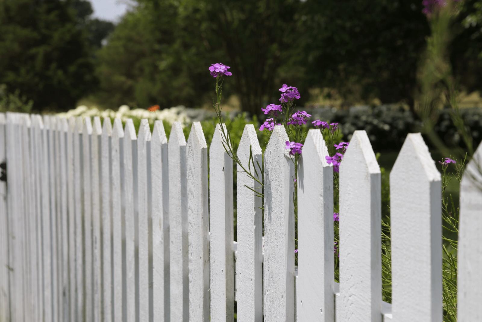 fencing eastern suburbs
