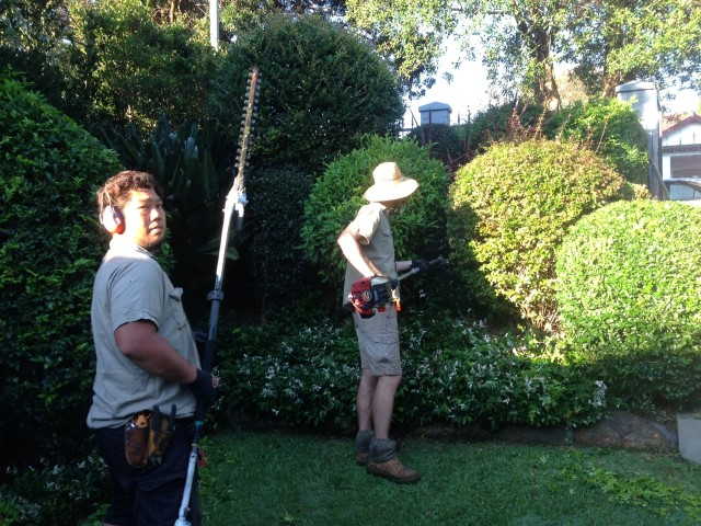 our-local-gardeners-and-landscapers-in-Sydney-at-work