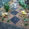 small front yard lanscaping eastern suburbs sydney