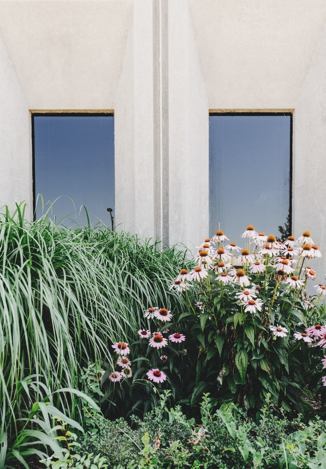 garden design consultation sydney