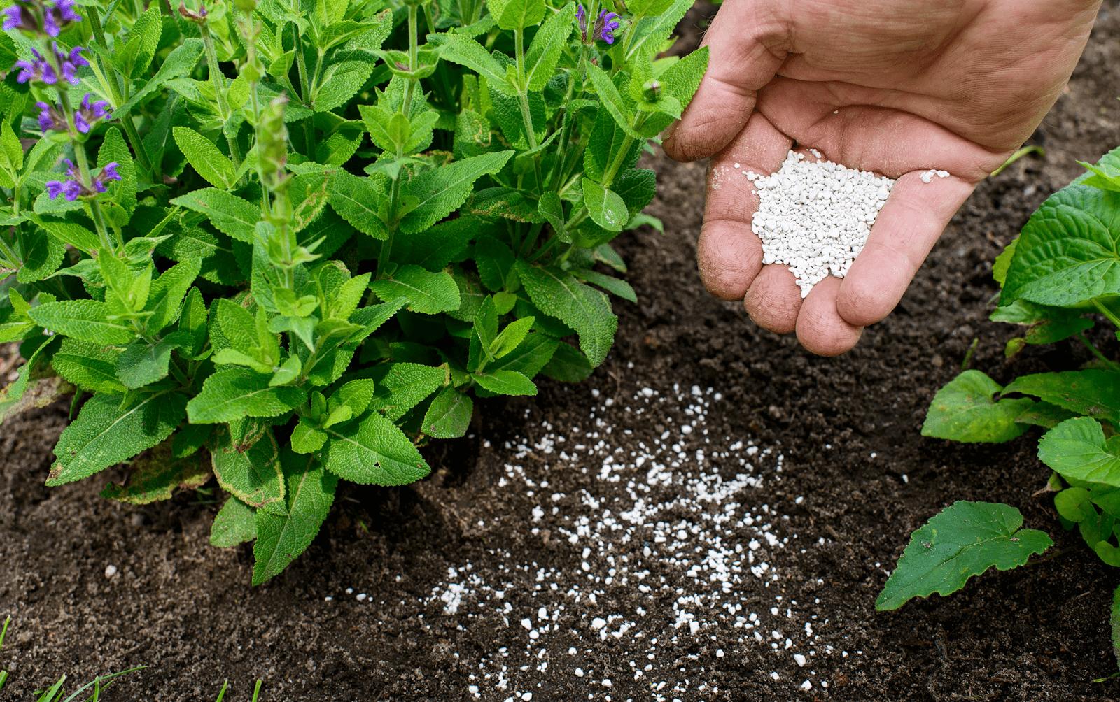 boost your fertiliser