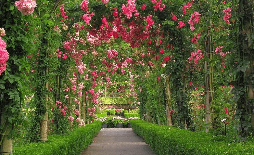 garden archway design