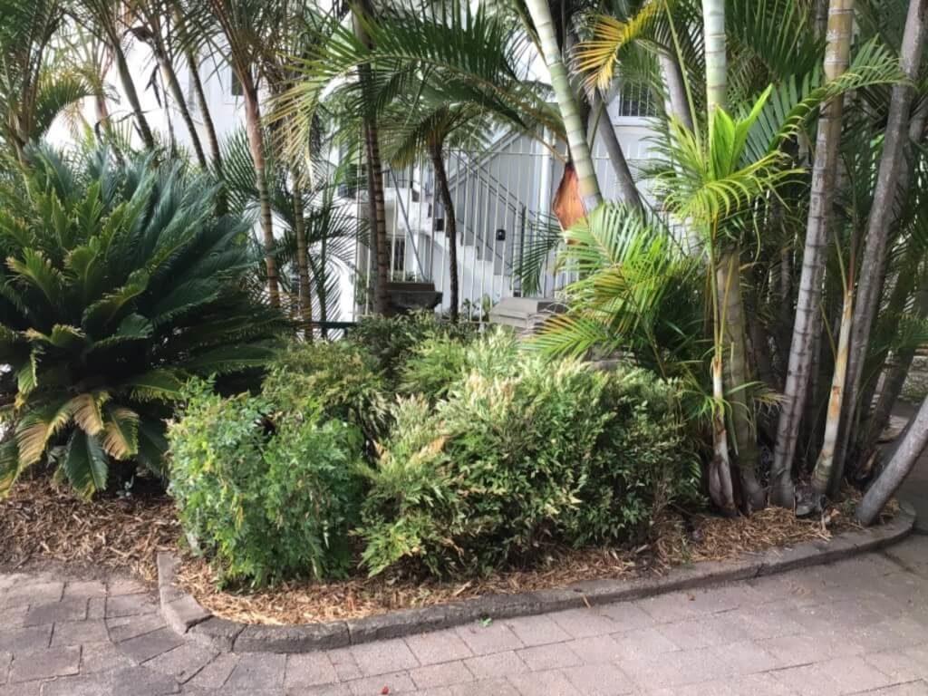 landscape designer in Sydney