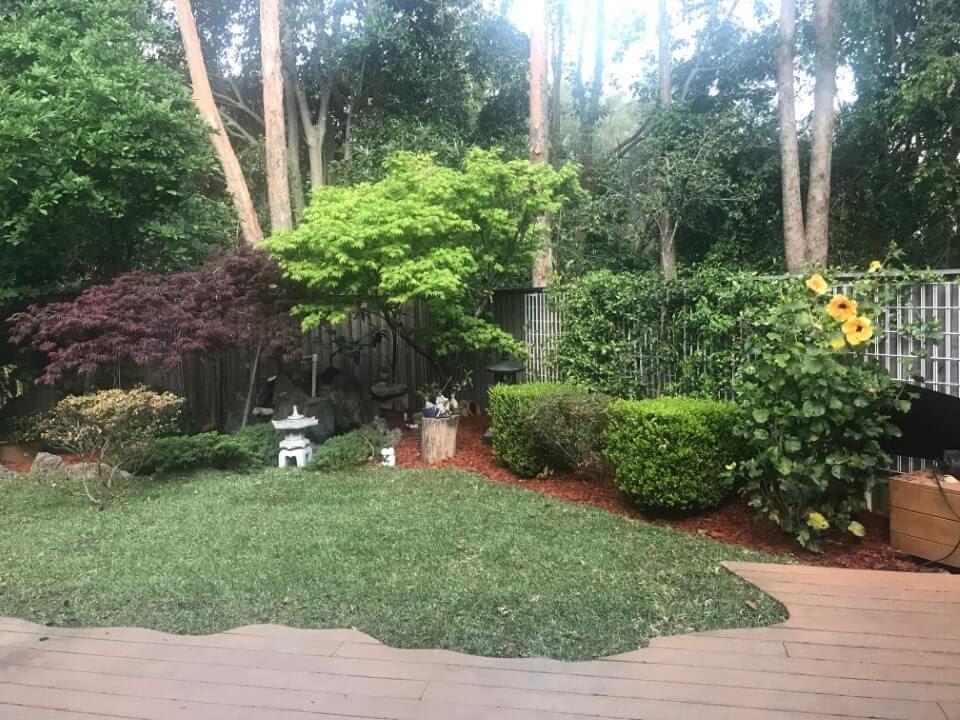 landscaping botany