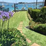 lawn garden maintenance sydney