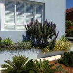 Nimboidia affordable garden services sydney