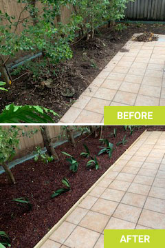 landscaping services sydney before after