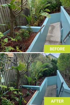 landscaping sydney before after
