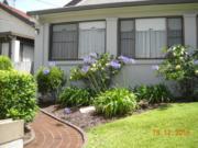 garden maintenance bondi eastern suburb sydney