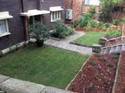 garden maintenance pott points sydney