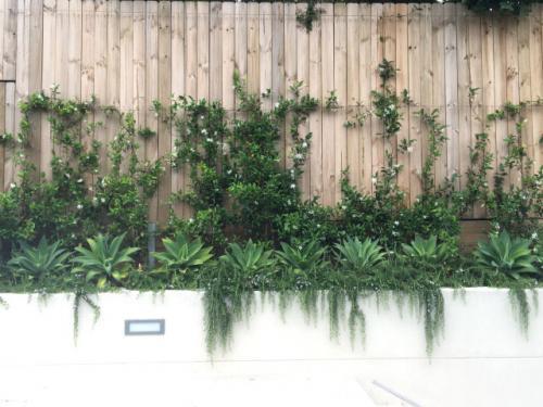 landscape designer gallery Sydney