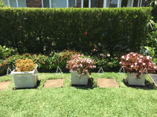 Commercial Landscaping Sydney