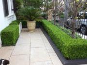 Garden maintenance Sydney