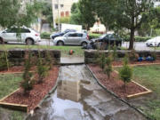 Residential Landscaping services Sydney