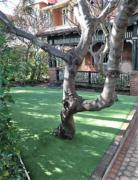 landscaping design lawn maintenance eastern suburbs